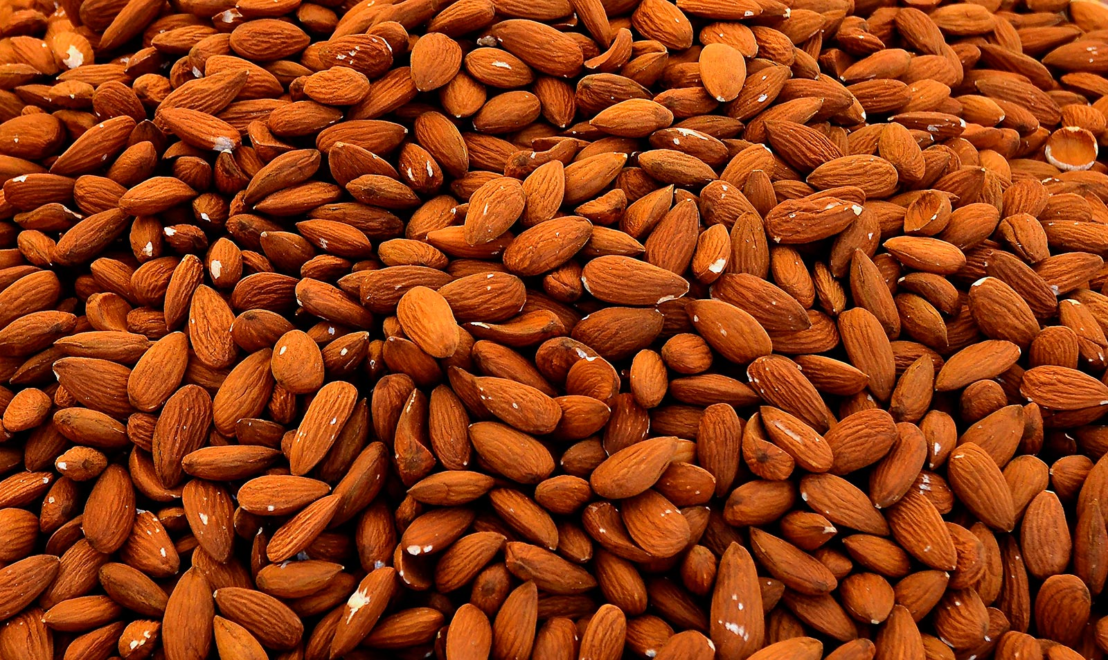 Dry fruits, seeds, spices and herbs